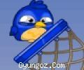 Kuş Basketi
